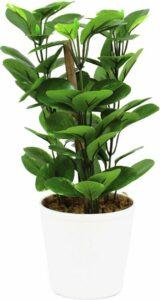 Europalms Pothos kunstplant in keramische pot - met mos - hoogte 30cm