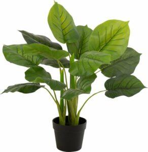 Europalms kunstplant Pothos struik Tendril Classic - 70cm