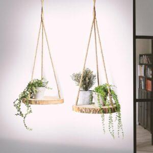 Plantenhanger Boomstam Schijf - 30cm - Handgemaakt - Planten-houder