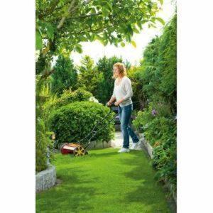 Kooimaaier voor de kleine tuin