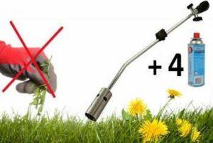 Milieuvriendelijke onkruidbrander - inclusief 4 gasflessen
