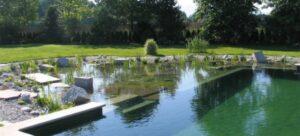 natuurzwembad aanleggen