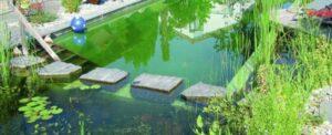 zwemvijver zelf aanleggen